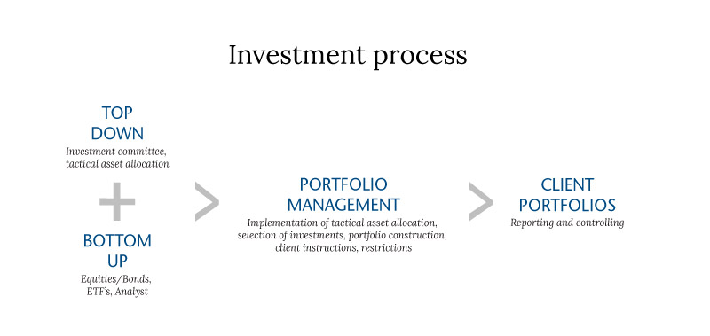 SSA investment process